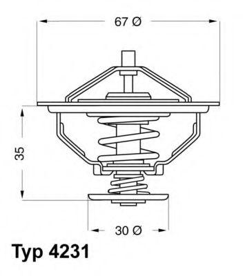 612280 - Термостат вахлер на гранту